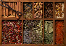 Especiarias na caixa de madeira fotos de stock royalty free
