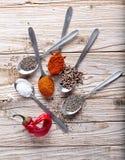 Especiarias na colher com pimentão Imagem de Stock