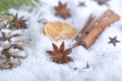 Especiarias na decoração do Natal fotografia de stock royalty free