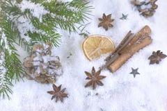 Especiarias na decoração do Natal e do decembrer foto de stock