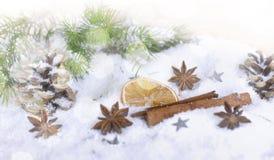 Especiarias na decoração do Natal e do inverno foto de stock royalty free