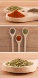 Especiarias nas colheres de madeira (pimenta, oregano, paprika) Imagens de Stock