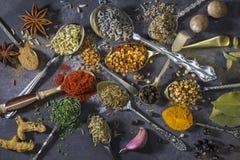 Especiarias nas colheres - usadas para adicionar o sabor ao cozimento Imagens de Stock Royalty Free