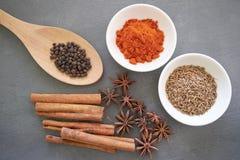 Especiarias: o pó do chillie, a vara de canela, a pimenta preta, as sementes de cominhos e o cravo-da-índia florescem Fotos de Stock