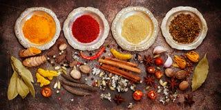 Especiarias, picante indianos e temperos em umas bacias foto de stock royalty free