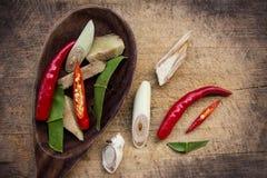 Especiarias picantes Imagem de Stock Royalty Free