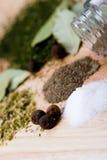 Especiarias: pimenta, sal e ervas Imagens de Stock