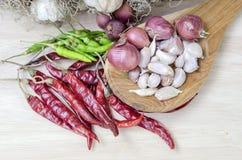 Especiarias que cozinham comendo o alho do alimento da pimenta Foto de Stock