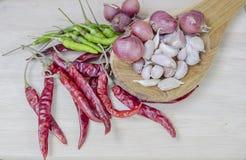 Especiarias que cozinham comendo o alho do alimento da pimenta Fotografia de Stock