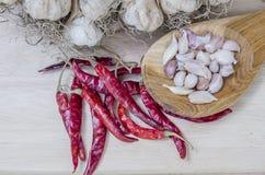 Especiarias que cozinham comendo o alho do alimento da pimenta Imagem de Stock