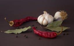Especiarias quentes para o alimento Imagens de Stock Royalty Free