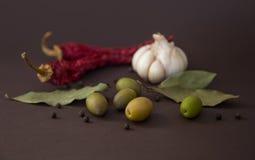 Especiarias quentes para o alimento Fotos de Stock Royalty Free