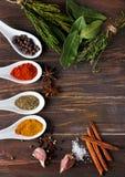 Especiarias secas e ervas verdes na tabela Fotografia de Stock