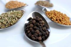 Especiarias secas, fim da pimenta preta acima da vista Foto de Stock Royalty Free