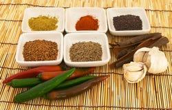 Especias 1 del curry Imagen de archivo libre de regalías