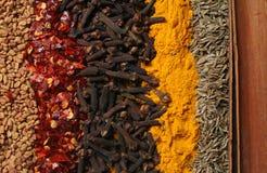 Especias 2 del curry Fotos de archivo