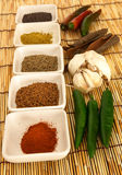 Especias 2 del curry Foto de archivo libre de regalías