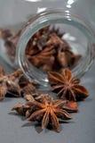 Especias, anís de estrella, cardamomo y coriandro. Imágenes de archivo libres de regalías