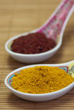 Especias asiáticas. Foto de archivo libre de regalías