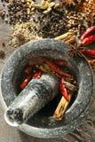 Especias con el mortero y la maja Imagen de archivo libre de regalías