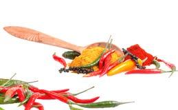 Especias con pimienta de chile Imagen de archivo libre de regalías