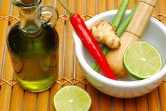 Especias de cocinar tailandesas Imagen de archivo libre de regalías