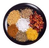 Especias de la comida Imagenes de archivo