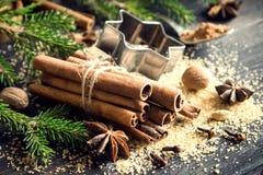 Especias de la Navidad Imágenes de archivo libres de regalías
