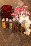 Especias de la Navidad Fotos de archivo