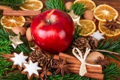 Especias de la Navidad con Apple rojo en primer Foto de archivo libre de regalías