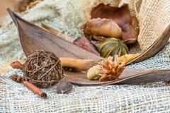 Especias de la Navidad en un fondo de la tela natural Palillos de canela y anice Foco seleccionado Imágenes de archivo libres de regalías