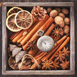 Especias de la Navidad, reloj del vintage en una cadenay los juguetes de la Navidad Fotografía de archivo