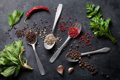Especias de la pimienta y de la sal, menta e hierbas del perejil imagen de archivo libre de regalías