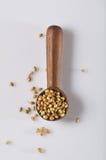 Especias del coriandro en cuchara de madera Fotografía de archivo