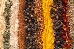 Especias del curry fotografía de archivo libre de regalías