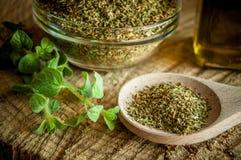 Especias del orégano y aceite de oliva imágenes de archivo libres de regalías