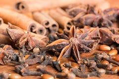 Especias del pan de jengibre, anís de estrellas, sinnamon, clavos Foto de archivo libre de regalías