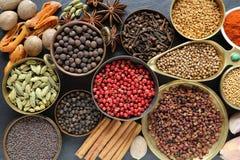 Especias e hierbas Foto de archivo libre de regalías