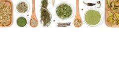 Especias e hierbas en el fondo blanco Visión superior fotografía de archivo libre de regalías