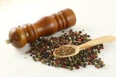 Especias e hierbas en los cuencos de madera Ingredientes de la cocina de la comida colorido Fotos de archivo libres de regalías