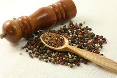 Especias e hierbas en los cuencos de madera Ingredientes de la cocina de la comida colorido Fotos de archivo