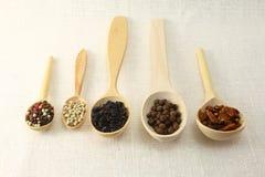 Especias e hierbas en los cuencos de madera Ingredientes de la cocina de la comida colorido Imágenes de archivo libres de regalías