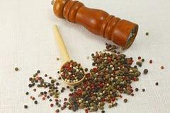 Especias e hierbas en los cuencos de madera Ingredientes de la cocina de la comida colorido Foto de archivo libre de regalías