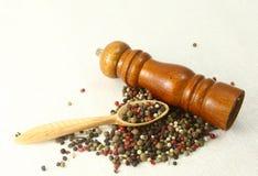 Especias e hierbas en los cuencos de madera Ingredientes de la cocina de la comida colorido Fotografía de archivo libre de regalías