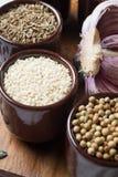Especias e hierbas en tazones de fuente de cerámica condimento del sésamo Na colorido Foto de archivo libre de regalías