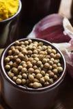 Especias e hierbas en tazones de fuente de cerámica condimento del coriandro colorido Foto de archivo libre de regalías
