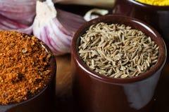 Especias e hierbas en tazones de fuente de cerámica condimento del zira Natu colorido Imagenes de archivo