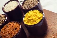Especias e hierbas en tazones de fuente de cerámica condimento A natural colorida Fotos de archivo