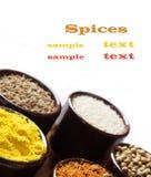 Especias e hierbas en tazones de fuente de cerámica condimento A natural colorida Foto de archivo libre de regalías