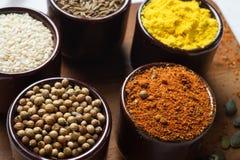 Especias e hierbas en tazones de fuente de cerámica condimento A natural colorida Fotografía de archivo